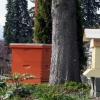 Métodos de apicultura: colmenas de barras superiores