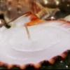 Favores nupciales: los mini velas de concha