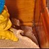 La eliminación de la alfombra