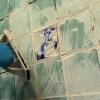 Lechada del azulejo