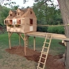 ¿Cómo construir un árbol fuerte