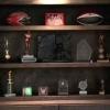 ¿Cómo construir una vitrina de trofeos