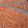 ¿Cómo encontrar un sitio y el suelo de la muestra