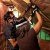 Cómo terminar paredes del ático y techos