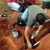 Cómo instalar el sistema de riego manguera de remojo