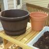¿Cómo hacer un jardín temático de contenedores