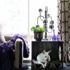 Cómo hacer una cama de madera contrachapada para mascotas y mesa auxiliar