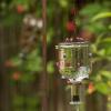 ¿Cómo hacer un alimentador del colibrí tequila botella