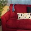 ¿Cómo hacer de banco y del sofá cojines