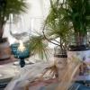 Cómo hacer favores de la boda de hoja perenne y arreglos de mesa