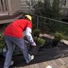 Cómo prevenir las malas hierbas con tela de jardín