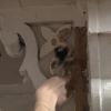 Cómo quitar y prepararse una columna del porche putrefacción