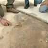 ¿Cómo reparar un subsuelo dañados por el agua