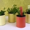 Cómo convertir una lata de pintura en un plantador de jardín