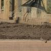Cómo utilizar la solarización del suelo para mantener en buena forma