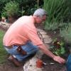 La incorporación de verduras en macizos de flores