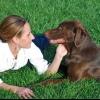 Paisajismo para dueños de perros