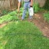 El cuidado del césped: matar a un césped, análisis de suelo, esparciendo la semilla