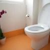 Cómo reemplazar un asiento de inodoro o fijar un asiento de inodoro sueltos