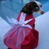 Vestido de fiesta del perrito