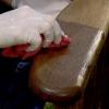 Los fundamentos de la madera tinción