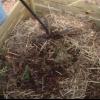 Consejos para herramientas de compost