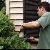 Consejos para el mantenimiento del jardín de verano