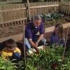 Consejos sobre la creciente jardineros-a-ser