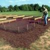 Consejos para proteger el jardín de las plagas