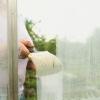 Usando un invernadero