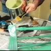 El uso de un removedor de pintura con el medio ambiente