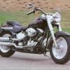 2002 Harley-davidson chico gordo FLSTF