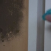 3 Usos Sorprendentes de peróxido de hidrógeno alrededor de la Casa