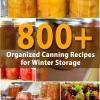 800+ Organizados Conservas para almacenamiento de invierno