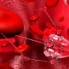 ¿Existen las nanotecnologías naturales?