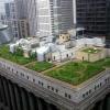 ¿Qué es un techo verde?