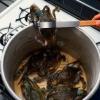 Cangrejos de cocina