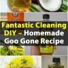 Fantástico DIY Limpieza - Homemade Goo Gone Receta