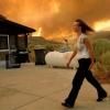 Guía en Wildfire seguridad