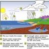 Cómo funciona la hidrología