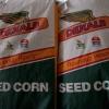 ¿Cuánto maíz necesitaría para alimentar un viaje por el país con etanol?