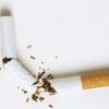 ¿Cómo funciona la nicotina
