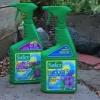 ¿Cómo deshacerse de los mosquitos en las plantas de interior