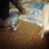 ¿Cómo las organizaciones hambre en el mundo trabajan