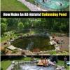 DIY al aire mágico: Cómo Hacer un todo-natural Piscina Estanque