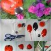 Artesanía Reciclaje rápida: Mariquitas adorables hechos de cucharas de plástico