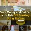 Ahorre dinero y reducir la grasa con esta cocina DIY Receta spray