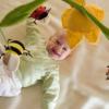 Actualización de la decoración de primavera: la habitación del bebé