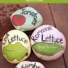 Summer Garden Proyecto DIY - Marcadores de jardín caseras con piedras