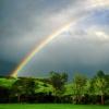¿Qué causa el olor después de la lluvia?